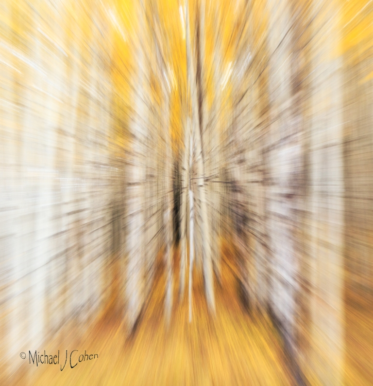 aspen-abstract