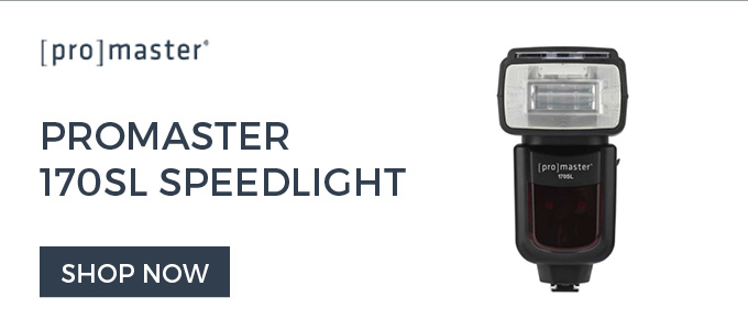 Promaster 170SL Flash